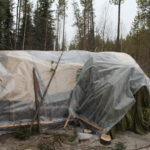 Group Super Shelter
