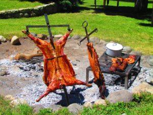 Outdoor Cookery